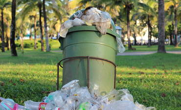 How to outsmart waste featured image