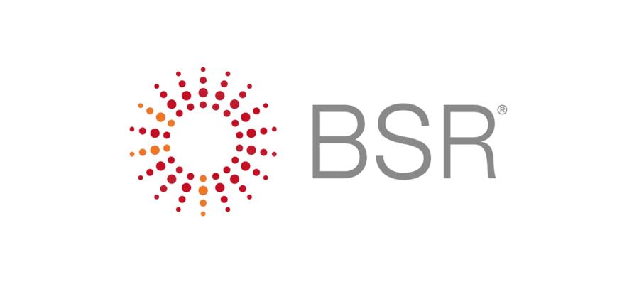 BSR VERGE Net Zero Partner